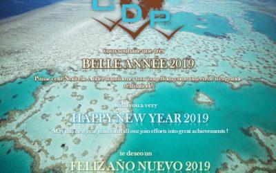 Meilleurs voeux pour cette nouvelle année 2019